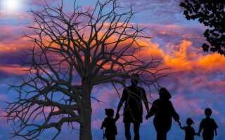 5 способов жить в гармонии или как построить счастливую семью