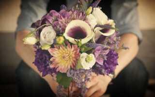 Как порадовать жену? И нужно ли делать сюрпризы любимой женщине?