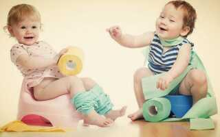 На заметку маме: как приучить ребенка к горшку