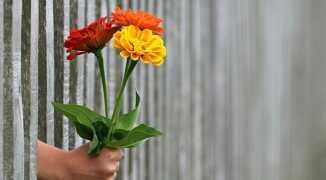 Почему мужчина не дарит подарки, деньги и цветы