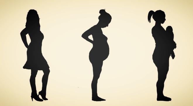 Фазы беременности